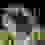 ΑΡΧΙΕΡΑΤΙΚΗ ΘΕΙΑ ΛΕΙΤΟΥΡΓΙΑ- ΙΕΡΑ ΜΟΝΗ ΕΛΕΟΥΣΗΣ ΠΑΤΡΩΝ 15.8.17 (ΒΙΝΤΕΟ)