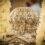 Ο θησαυρός των Πατρών.  (Η εορτή της επανακομιδής της τιμίας Κάρας του Αποστόλου Ανδρέου στην Πάτρα)